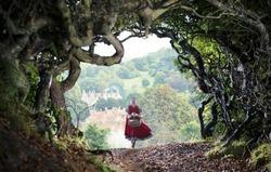 «Чем дальше в лес…»: кино по сказкам братьев Гримм
