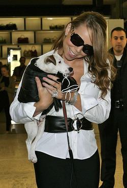 Мэрайя Кэри заплатила за отпуск своих собак 189 000 долларов