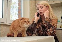 Дневник кота Плинтуса (часть 5)