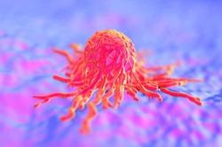 Рак удивил ученых