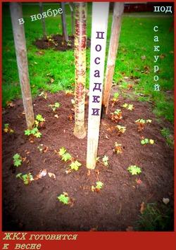 Озеленители работают в ноябре