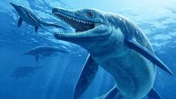 В Китае нашли самку ихтиозавра, умершую во время родов