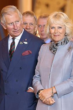 Принц Чарльз и Камилла Паркер-Боулз разводятся