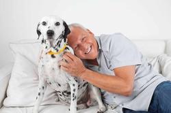Общение с собакой омолаживает