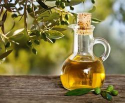Оливковое масло защищает организм от загрязнений воздуха