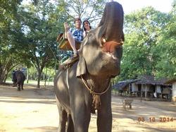 Таиланд - страна 1000 улыбок!