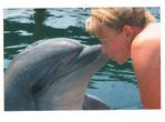 Поцелуй с дельфином!