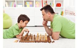 Влияние окружающей обстановки на развитие интеллекта ребенка