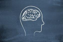 Здоровый сон влияет на размеры мозга
