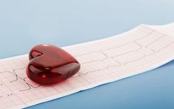 Чем выше человек, тем меньше он подвержен заболеваниям сердца