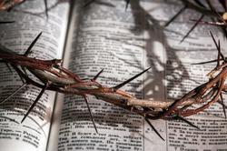 Музей Израиля презентовал самую маленькую Библию на свете