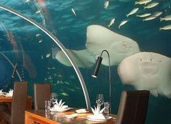 На Мальдивах открыли первый в мире подводный ресторан