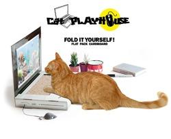 В Британии создан первый ноутбук для кошек