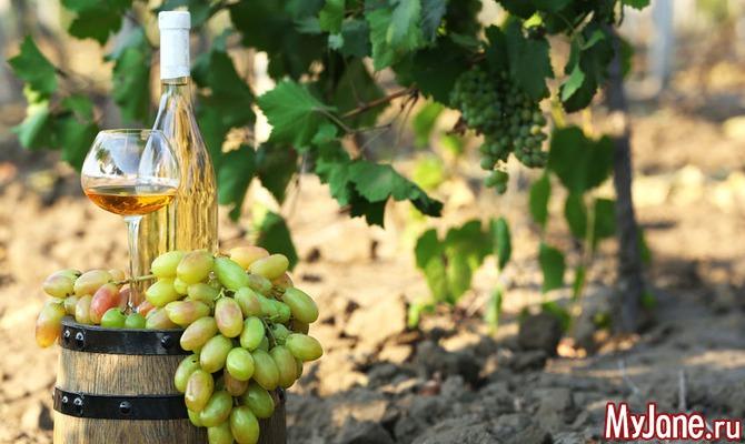 Подарок Диониса: 28 августа – открытие винного фестиваля на Кипре