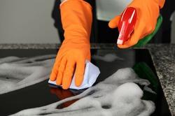 В домашней пыли обнаружены десятки тысяч видов вредных микроорганизмов