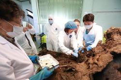 В России открылась лаборатория по клонированию вымерших животных