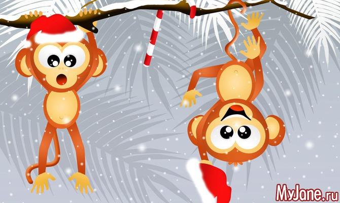 По законам Года огненной обезьяны