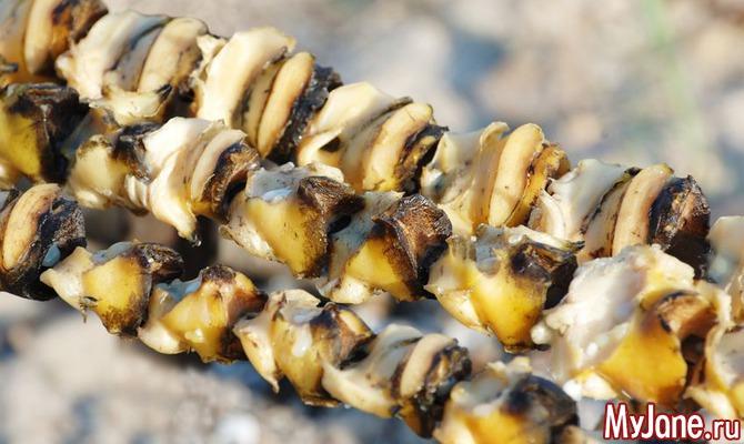 Прекрасный сувенир из Крыма – ракушка рапана