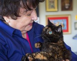 Не стало самой старой кошки Тиффани Второй
