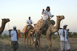Снова в поход! Фёдор Конюхов намерен на верблюдах пересечь пустыни Австралии