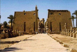 Ни один турист не пострадал в ходе теракта в Луксоре