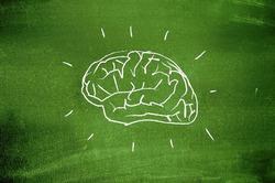 Активнее двигайтесь, чтобы не уменьшить объём мозга!
