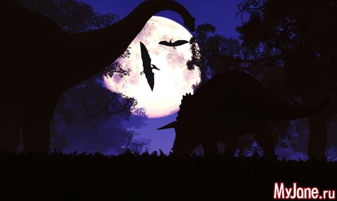 16-е лунные сутки