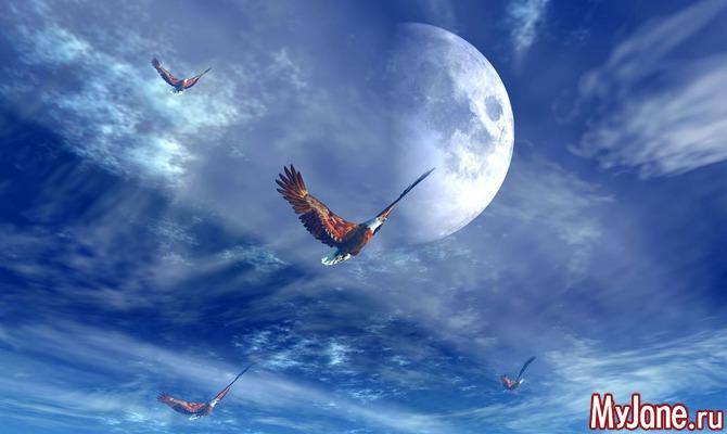 20-е лунные сутки