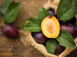 Создали новый фрукт - планго