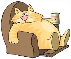 Кот олигарха (рассказ старого ветеринара)