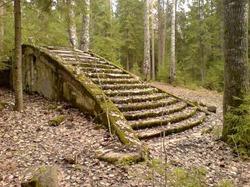 Люблю одиночество (Достали все! Ушла жить в лес!)