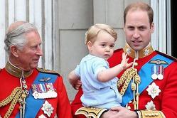 Дед растит из принца Джорджа эколога