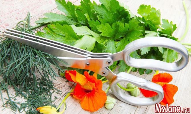Домашние растения, которые можно употреблять в пищу