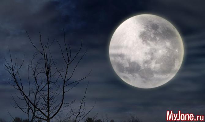 Астрологический прогноз на неделю с 12.12 по 18.12