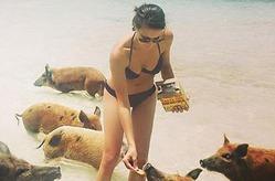 Кира Пластинина на Багамах купается со свинками