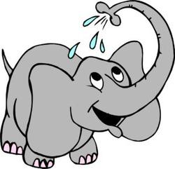 Из чего состоит слон (Владимир Шебзухов)