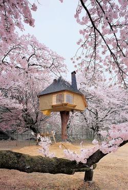 """Чайный домик """"Tetsu"""" в Яманаси, Япония"""