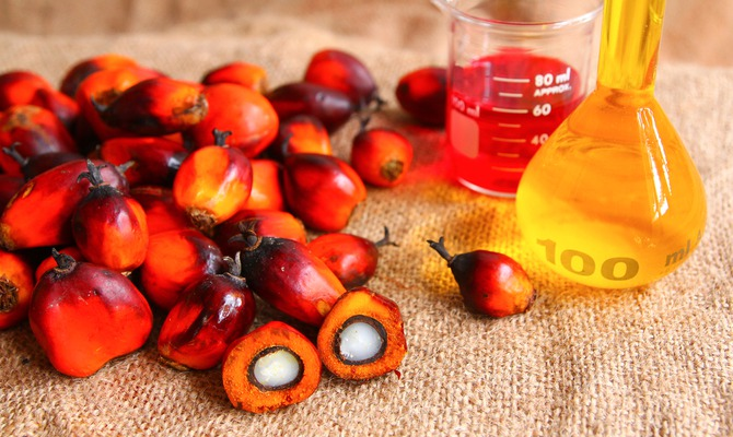 Пальмовое масло: «убийца» или нормальный продукт?