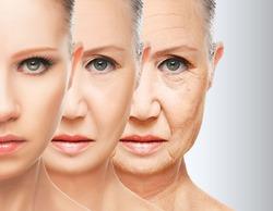 Биологи назвали лучший способ борьбы со старением