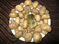 Маринуем грибы дома за 10 минут