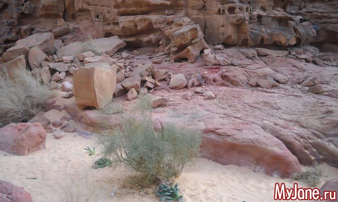 Вади-Рам: бескрайние пески и живописные скалы