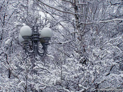 В моем городе зима, зима, зима... И так до самой Весны!