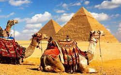 C октября начнется возобновление авиасообщения с Египтом