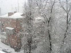 Снежные загадки