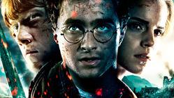 Warner Bros. намерен собрать героев «поттерианы» в новом проекте