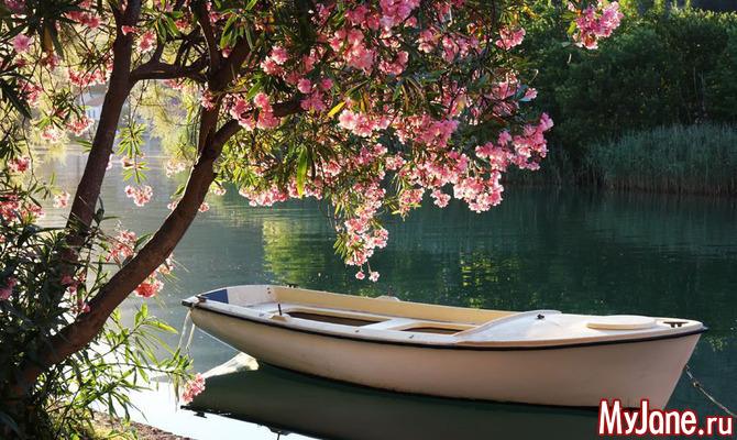 Лодка на водяной глади