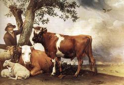 11 ноября  День пастуха
