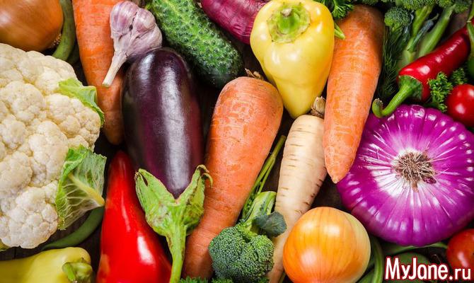 Осень – праздник овощного изобилия