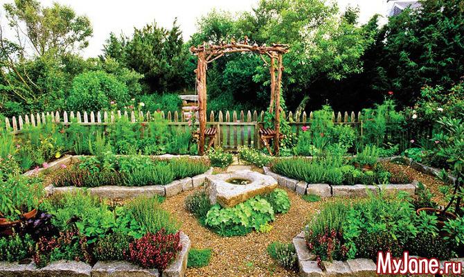 Овощные клумбы: только декоративный огород или дизайнерское оформление участка?