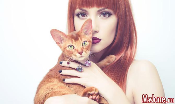 Как кошки нас защищают?